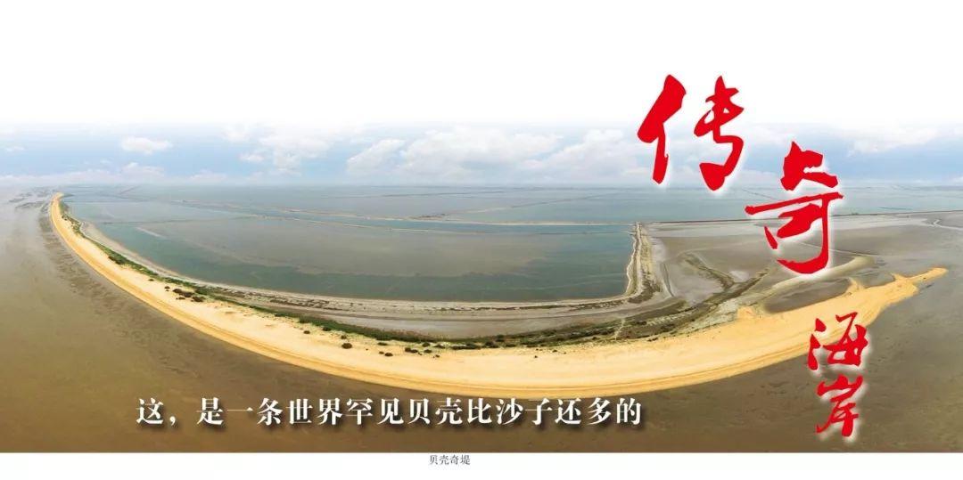 """无棣贝壳堤岛""""拥而不挤"""",这个五一给了文明旅游一个完美的诠释"""