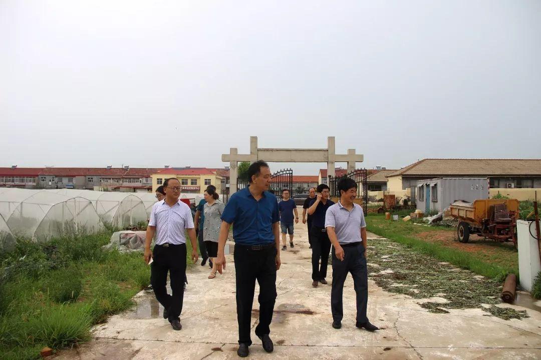 无棣县车王镇千年古桑景区+百果园+5个村联手打造乡村旅游集群片区