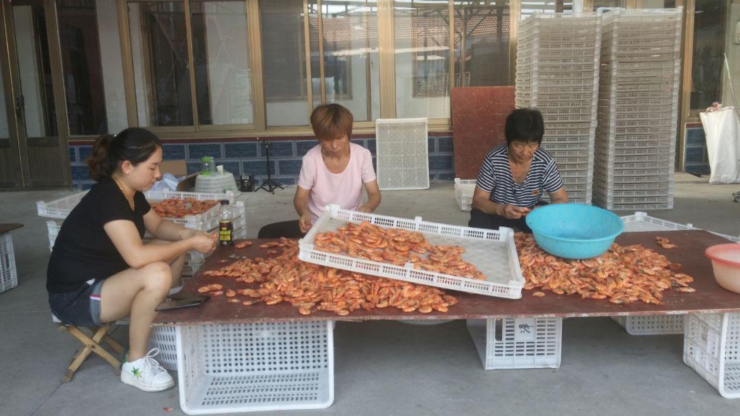 无棣特色烤虾唱响致富经