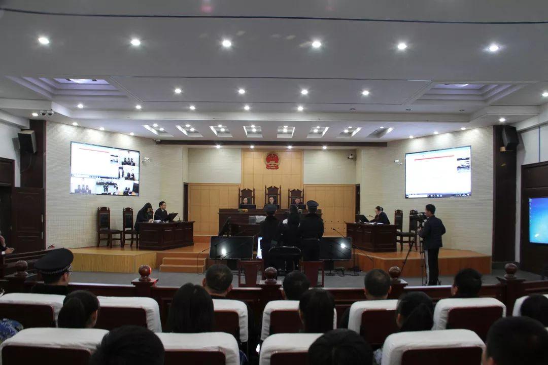 无棣法院开展宪法宣传日暨法院公众开放日活动