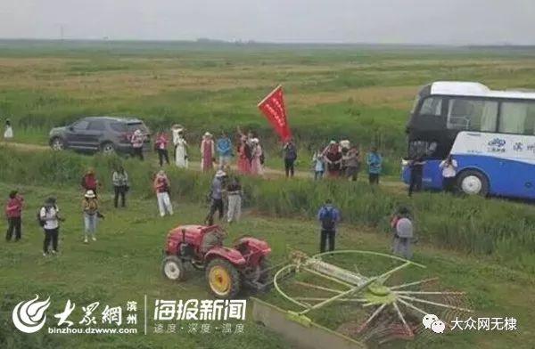 无棣多个新型农业经营主体获得省级荣誉称号!
