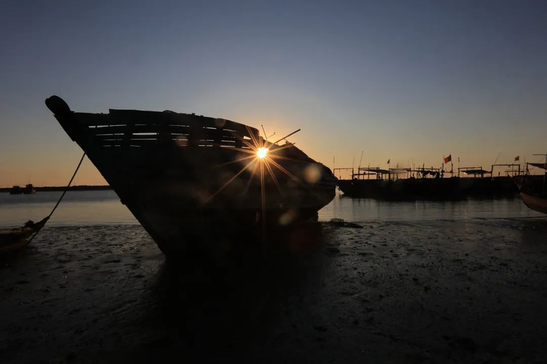 9月21日:2020首届中国 • 滨州汇泰盐田虾文旅节盛大开幕