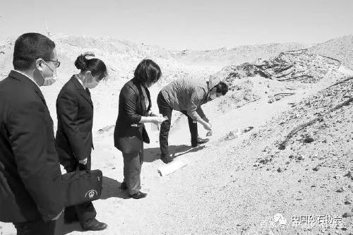 全国人大代表关注非法采砂,现场指导公益损害如何认定!